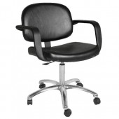 JayLee Task Chair  $387.00