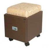 Portable Pedicure Stool  $389.00