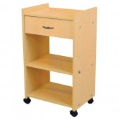 Organizer Portable Salon-Spa Cart  $249.00