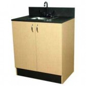 Organizer w/Stainless Bar Sink  $879.00