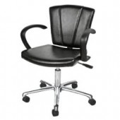 Sean Patrick Task Chair  $439.00