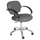 Cirrus Task Chair  $456.00