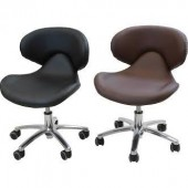 Standard Technician Chair  $170.00