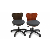 Deluxe Technician Chair  $320.00