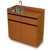 Dispensary Sink and Cabinet  $1,538.00