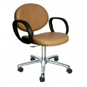 Berra Task Chair  $399.00
